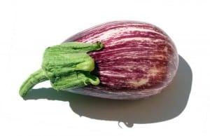 aubergine tigrée2