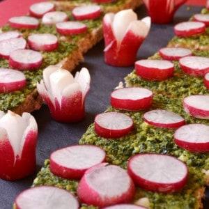 Canapés au pesto de cresson et aux radis roses