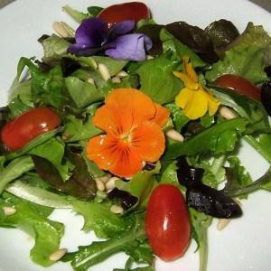 Salade fleurie