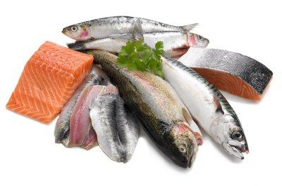 Peut-on encore manger du poisson ? Ma Cuisine Santé