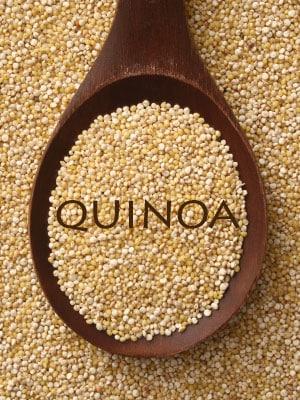 Recettes au quinoas