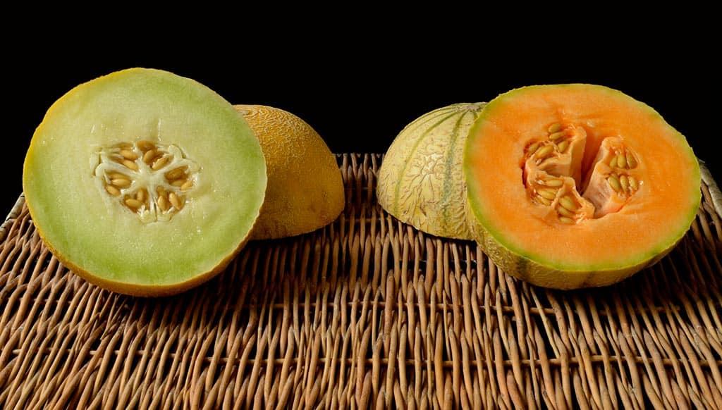 Les melons d'été